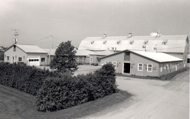 Ferme Maskita en mai 1988