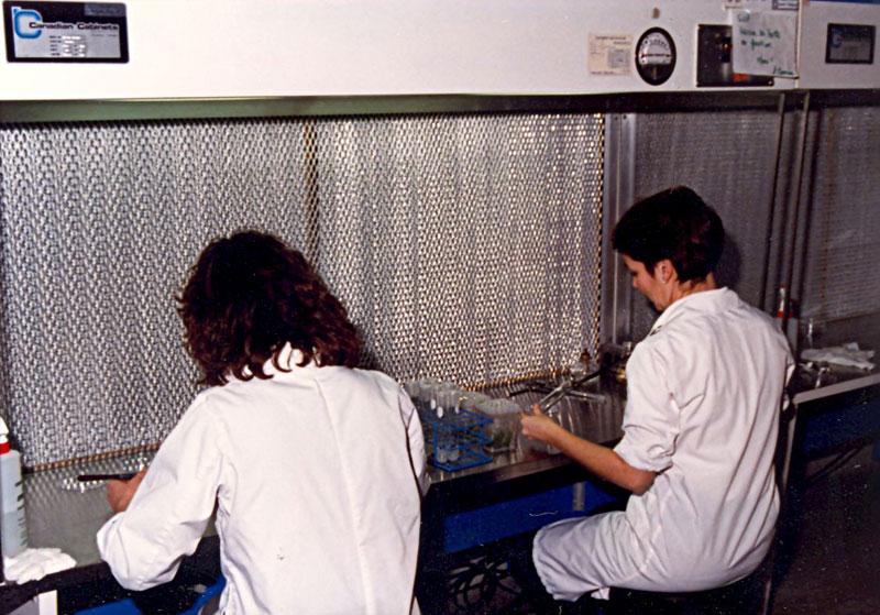 Laboratoire de micropropagation. Utilisé par les étudiants en horticulture (HO et HLF)
